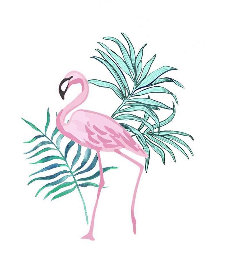 картинки фламинго раскраска стикер